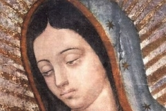 Donna_Guadalupe